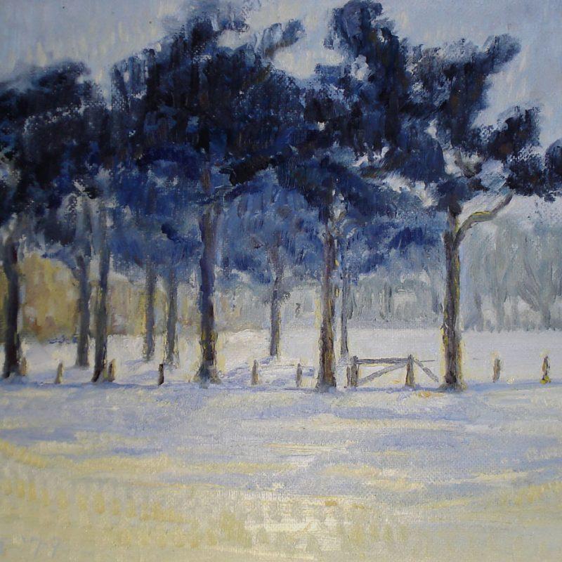 Winter on Bush Estate